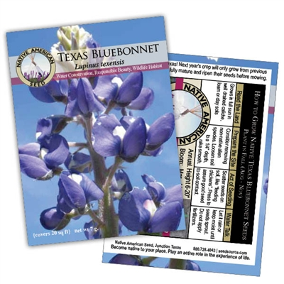 native_texas_bluebonnet-scentandviolet-houston-texas.jpg