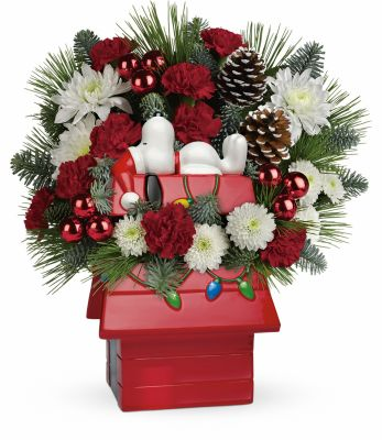 Snoopy's doghouse keepsake bouquet in Houston, TX