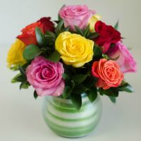 Spellbound Roses - Assorted