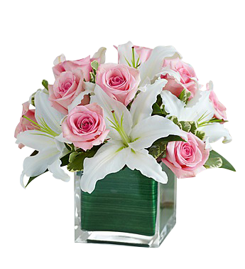 Pink roses and white lilies cube in Houston, TX