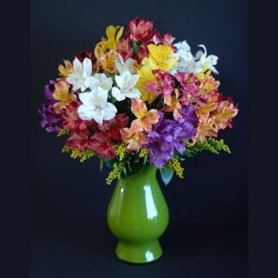 Peruvian Lily Bouquet in Houston, TX
