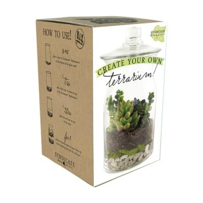 Diy Terrarium Kit Scent Violet Flowers And Gifts Houston Tx