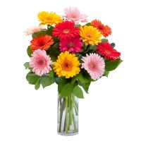 Dancing Gerberas bouquet in Houston, TX